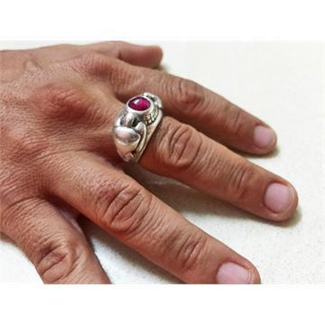טבעת צבי ים - שלמה המלך