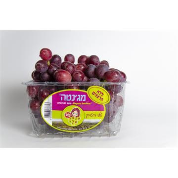 ענבי מאכל אדומים