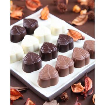 מגוון פרלינים משוקולד